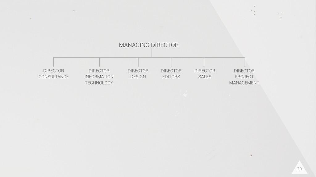 29 DIRECTOR CONSULTANCE DIRECTOR INFORMATION TE...