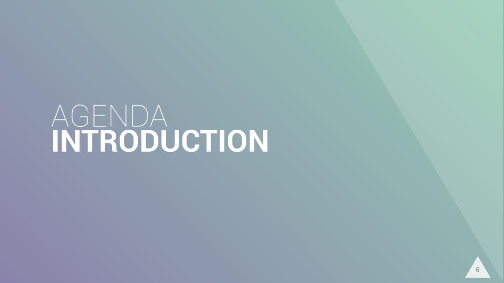 AGENDA INTRODUCTION 6