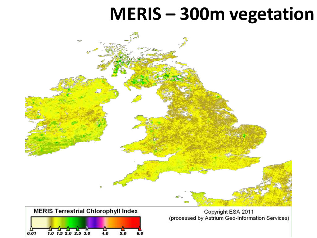 MERIS – 300m vegetation