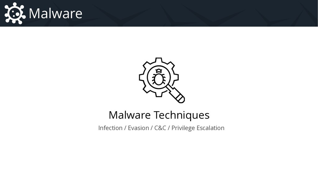 Malware Techniques Malware Introduction to Malw...