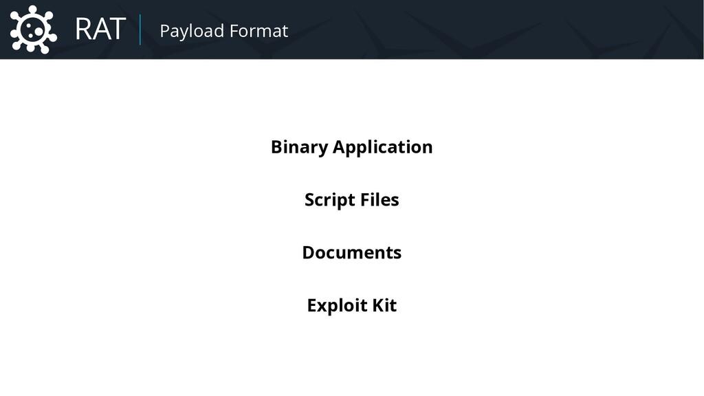 Malware Payload Formats Binary Application Scri...