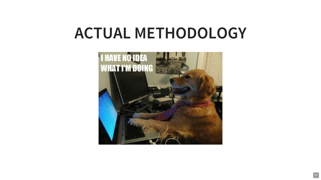 ACTUAL METHODOLOGY 31
