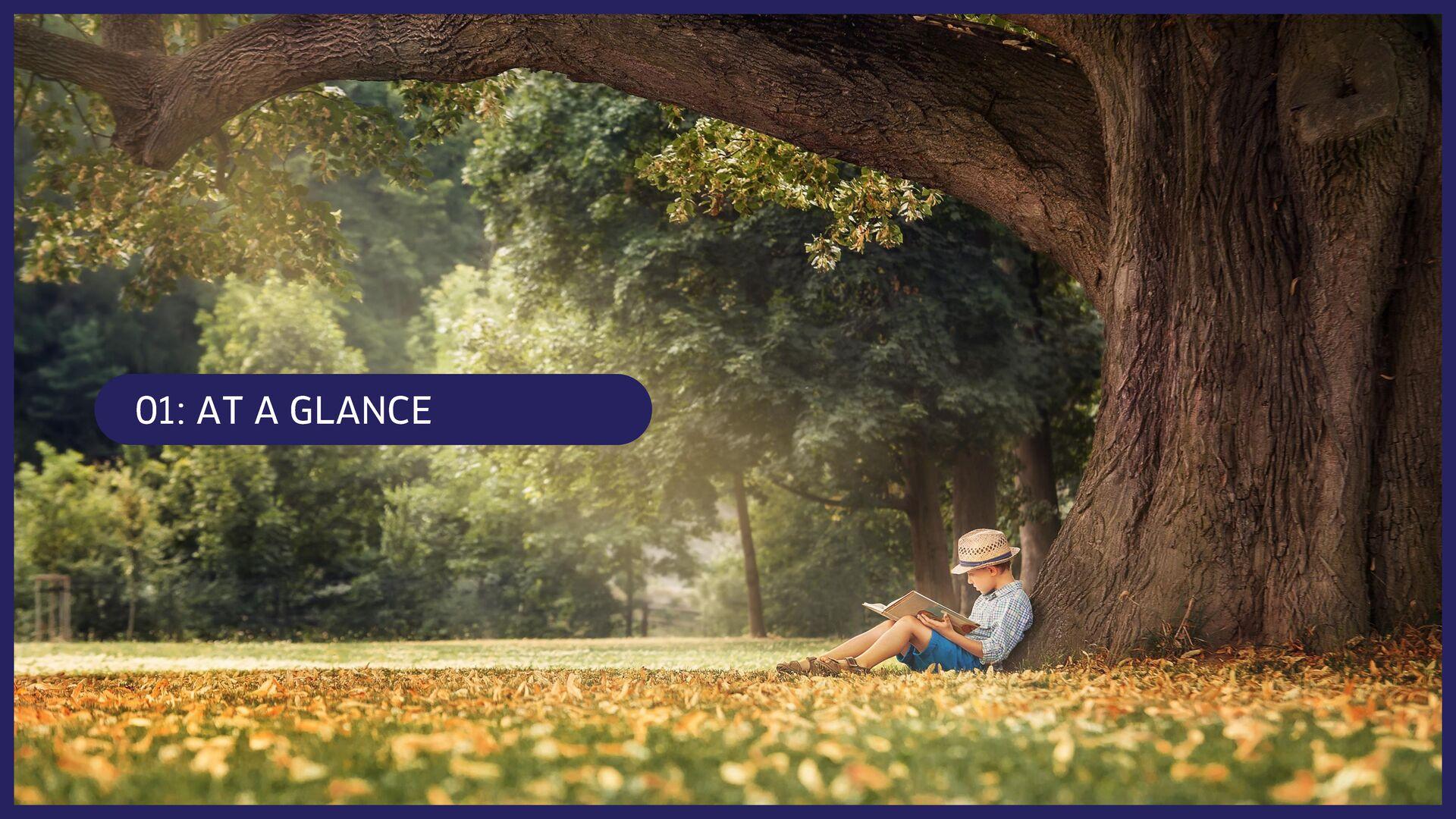 3 Company: 会社概要 Corporate Profile: 会社概要