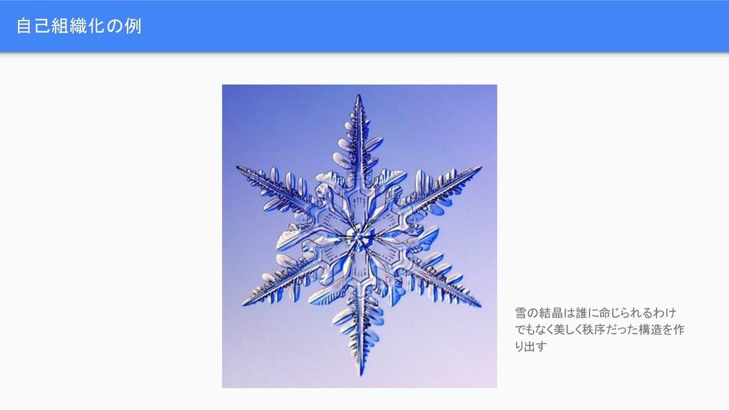 自己組織化の例 雪の結晶は誰に命じられるわけ でもなく美しく秩序だった構造を作 り出す