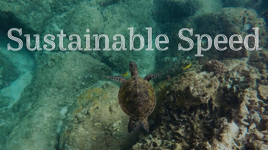 Sustainable Speed