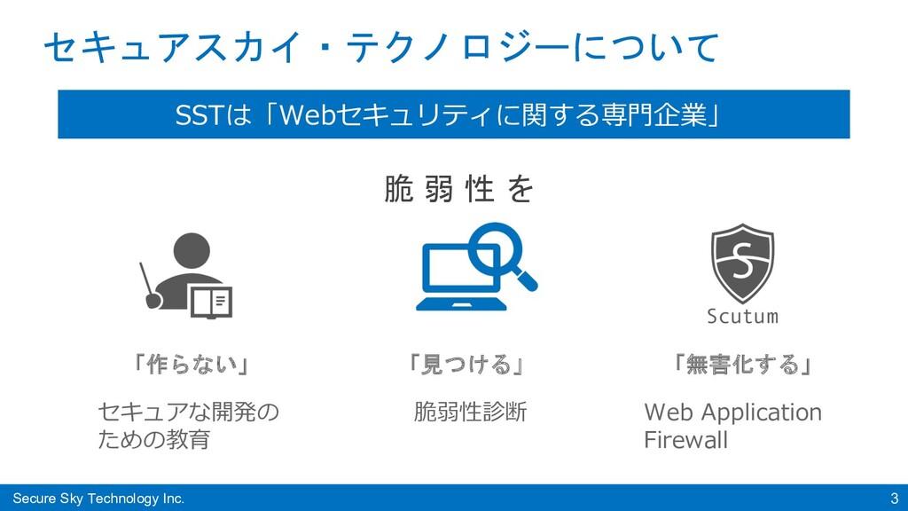 Secure Sky Technology Inc. 3 セキュアスカイ・テクノロジーについて...
