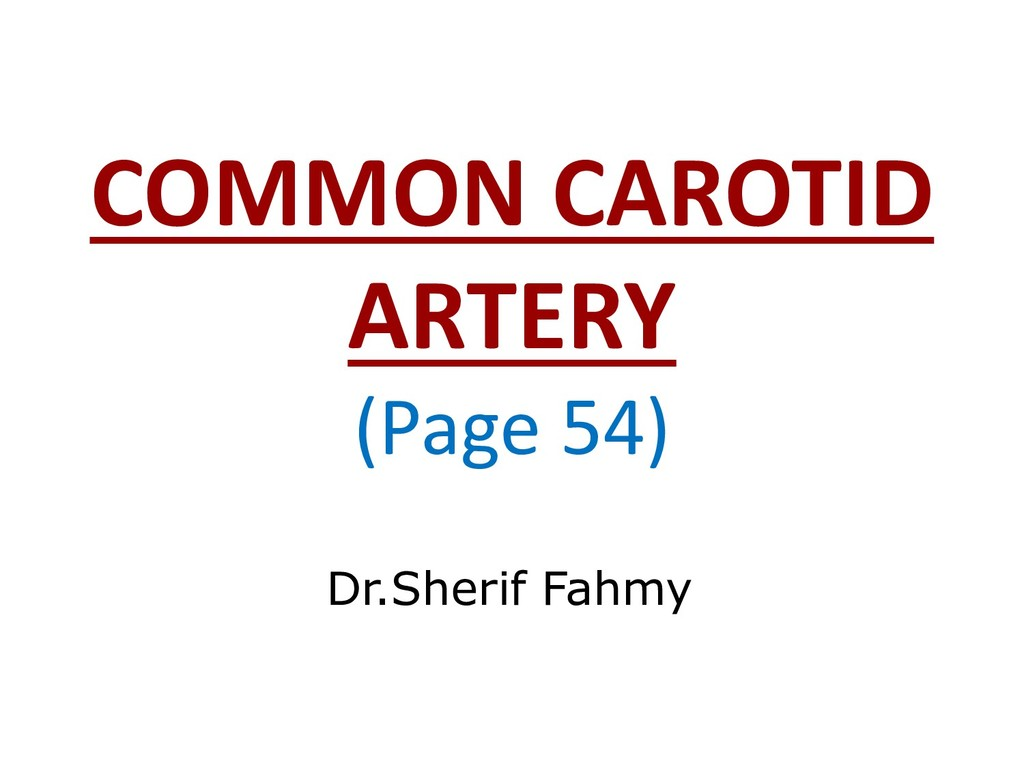 COMMON CAROTID ARTERY (Page 54) Dr.Sherif Fahmy