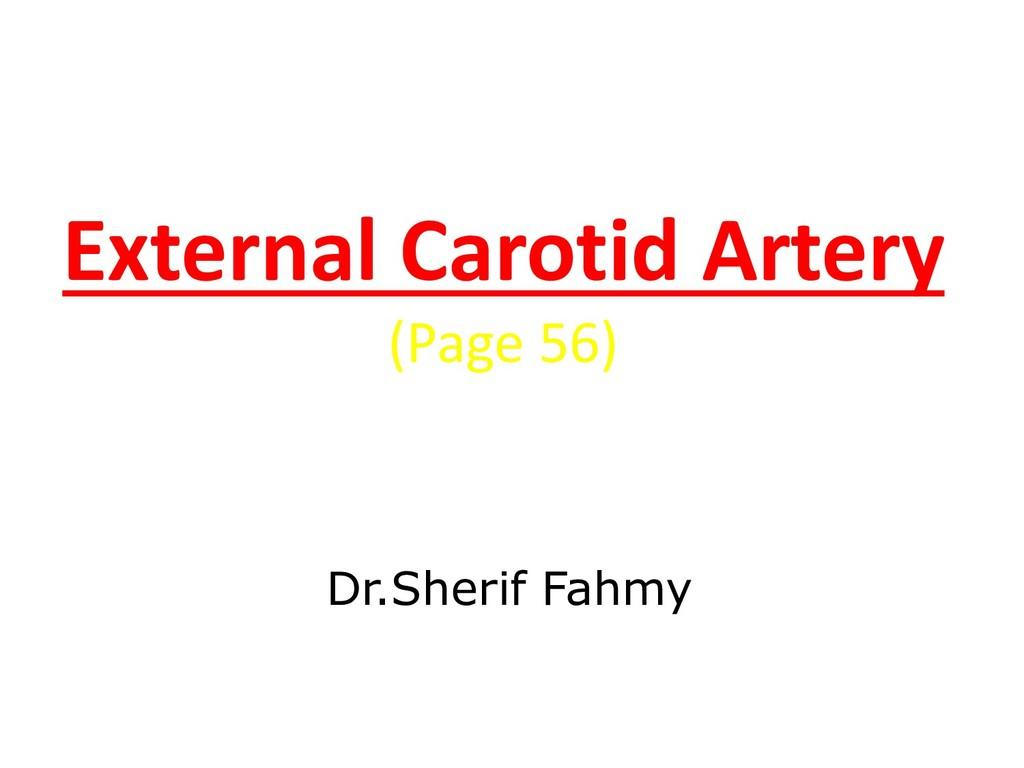 External Carotid Artery (Page 56) Dr.Sherif Fah...