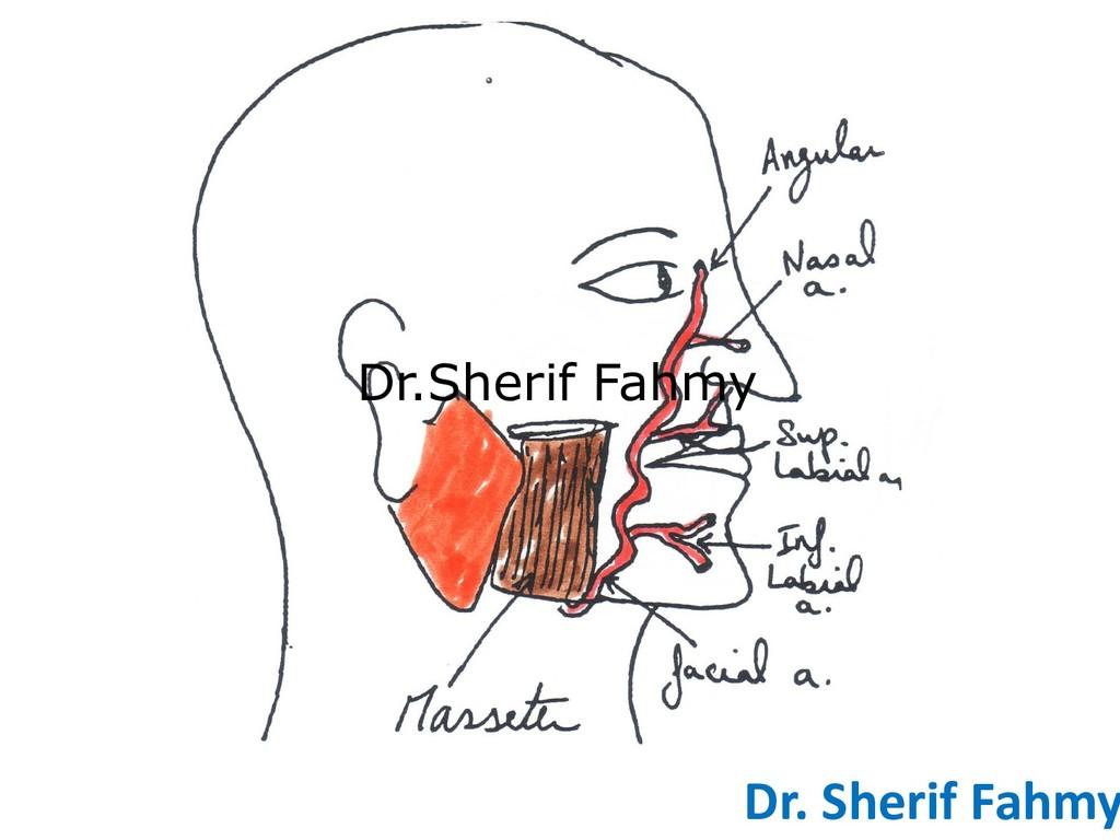 Dr. Sherif Fahmy Dr.Sherif Fahmy