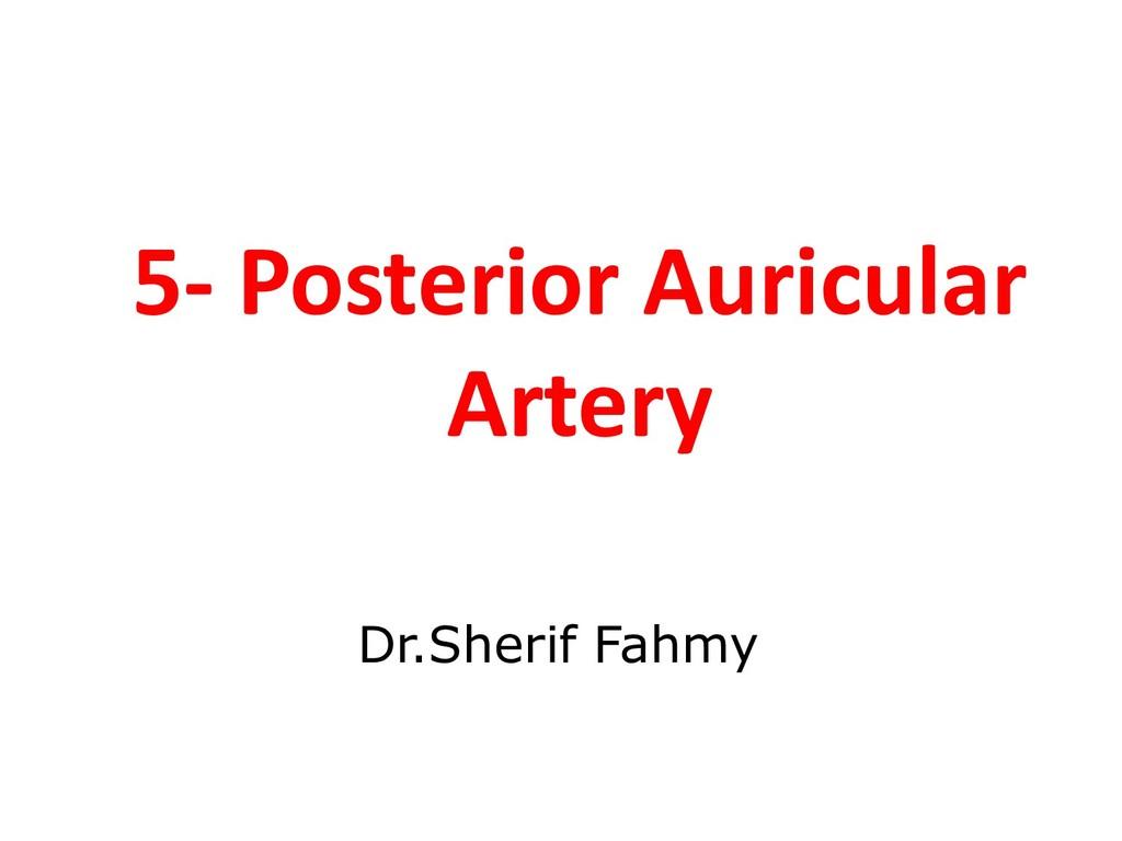 5- Posterior Auricular Artery Dr.Sherif Fahmy