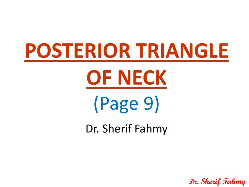 POSTERIOR TRIANGLE OF NECK (Page 9) Dr. Sherif ...