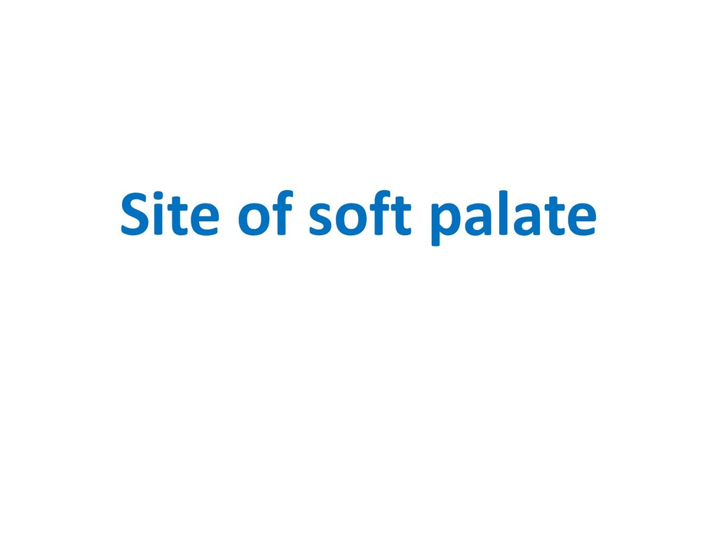 Site of soft palate