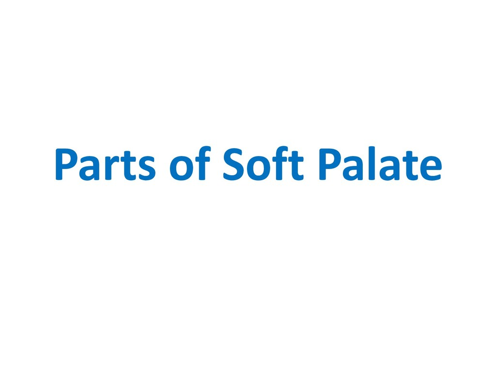 Parts of Soft Palate