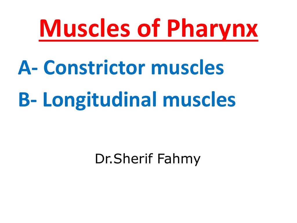 Muscles of Pharynx A- Constrictor muscles B- Lo...
