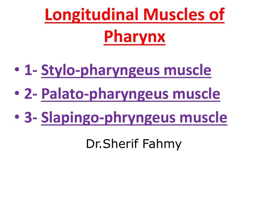 Longitudinal Muscles of Pharynx • 1- Stylo-phar...