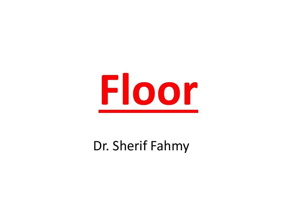 Floor Dr. Sherif Fahmy