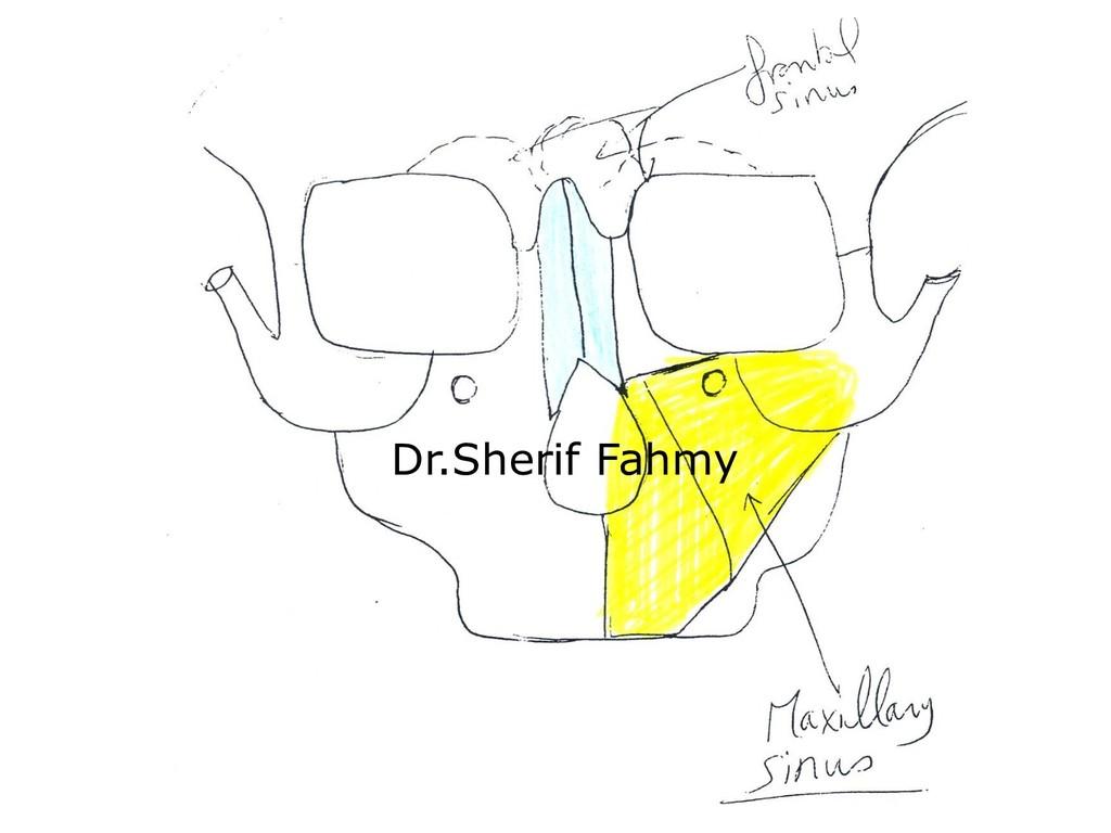 Dr.Sherif Fahmy