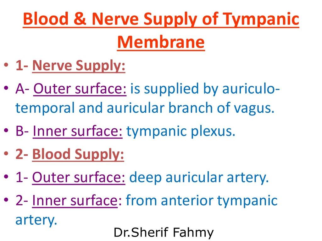 Blood & Nerve Supply of Tympanic Membrane • 1- ...