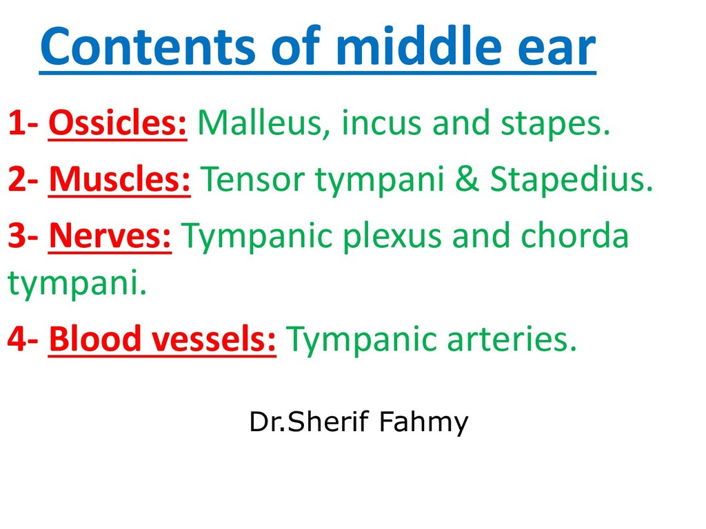 Contents of middle ear 1- Ossicles: Malleus, in...