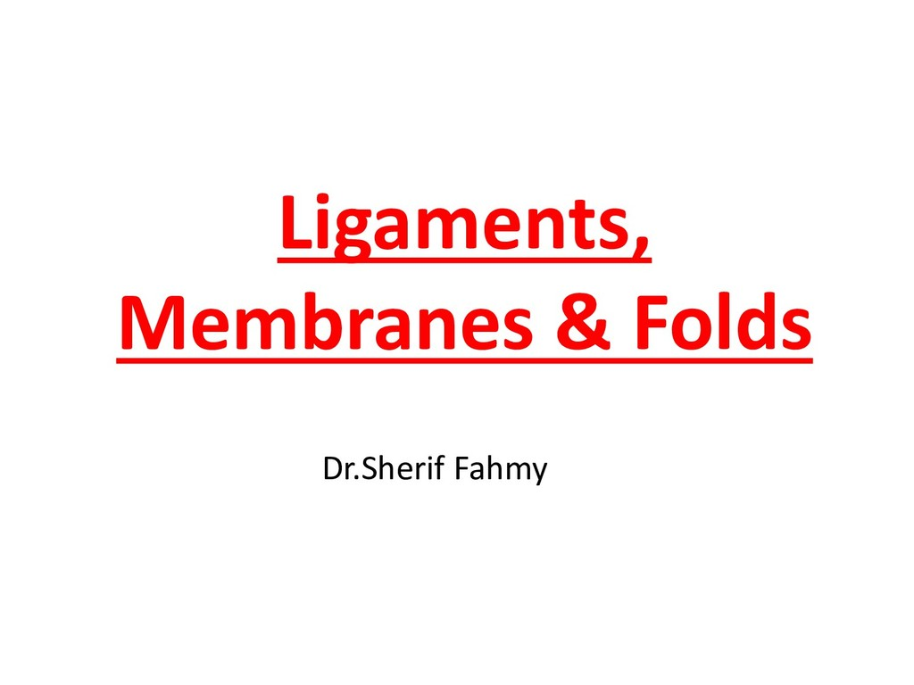 Ligaments, Membranes & Folds Dr.Sherif Fahmy