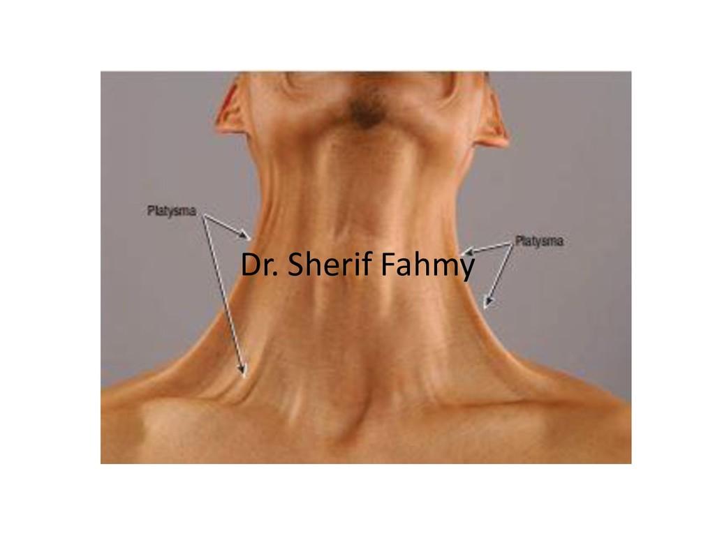 Dr. Sherif Fahmy