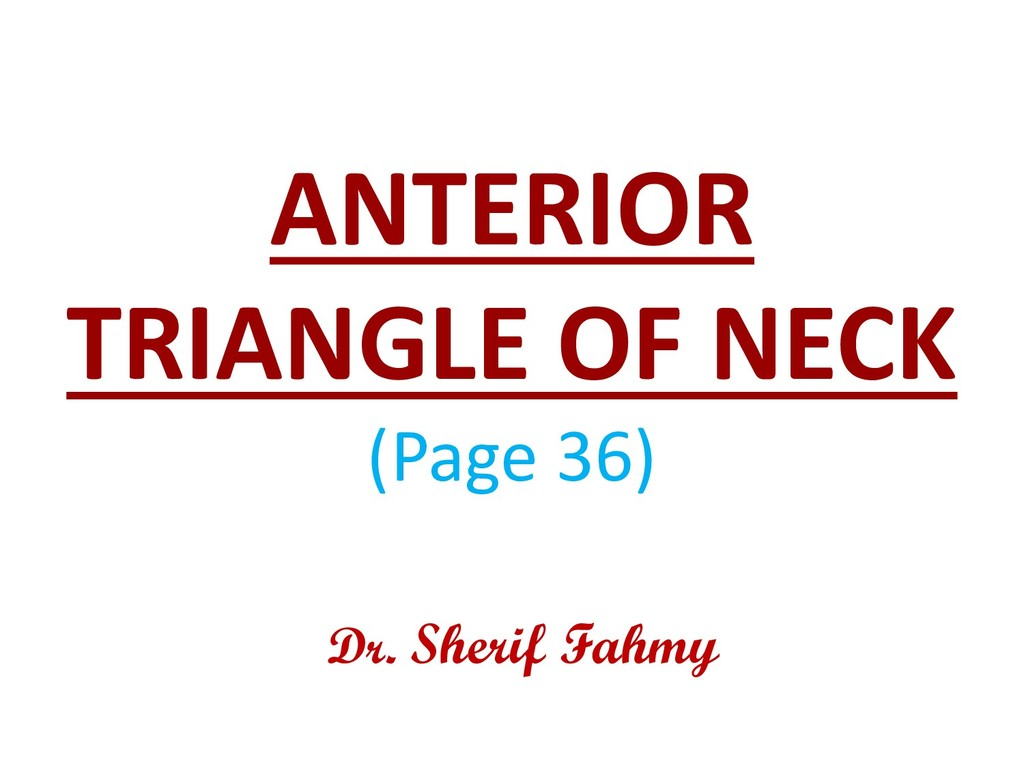 ANTERIOR TRIANGLE OF NECK (Page 36) Dr. Sherif ...