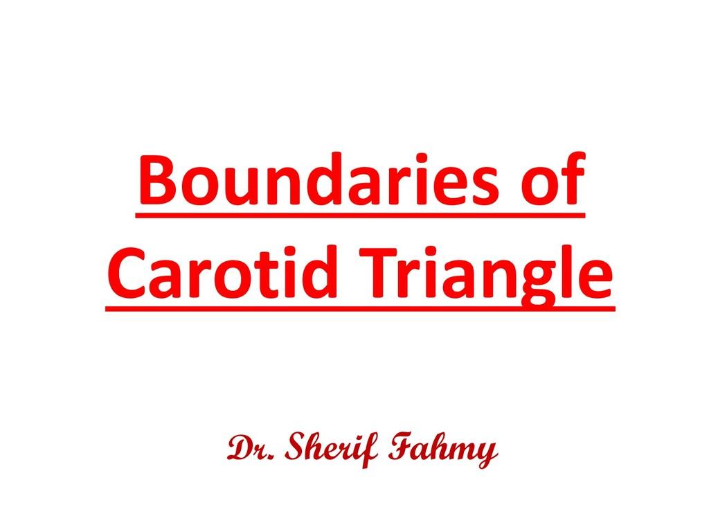 Boundaries of Carotid Triangle Dr. Sherif Fahmy