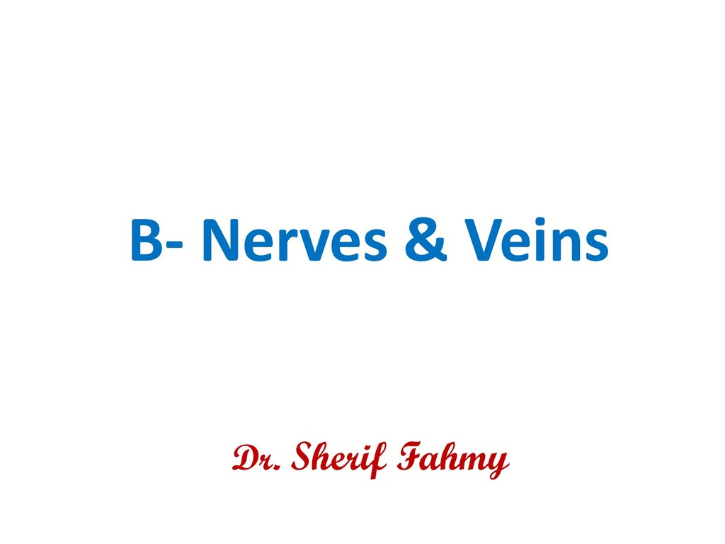 B- Nerves & Veins Dr. Sherif Fahmy