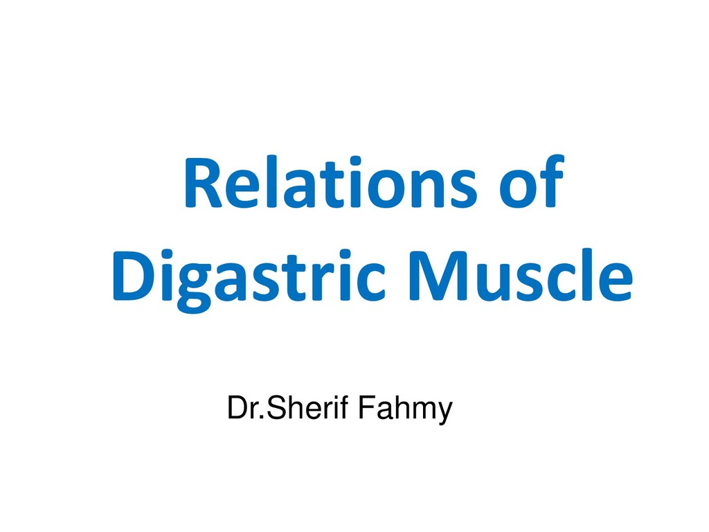Relations of Digastric Muscle Dr.Sherif Fahmy