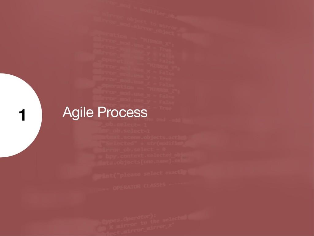 Agile Process 1