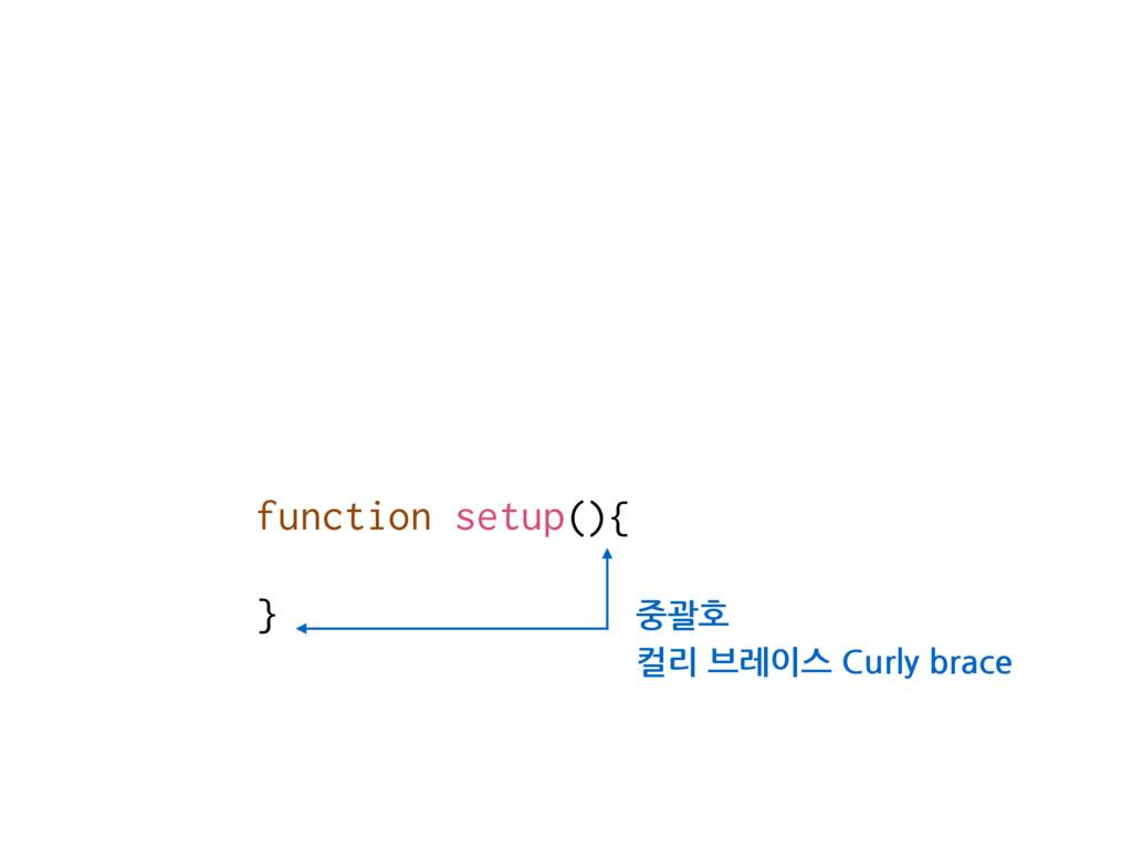 중괄호 컬리 브레이스 Curly brace function setup(){ }