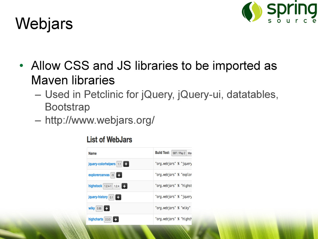 • Allow CSS and JS libraries to be imported as...