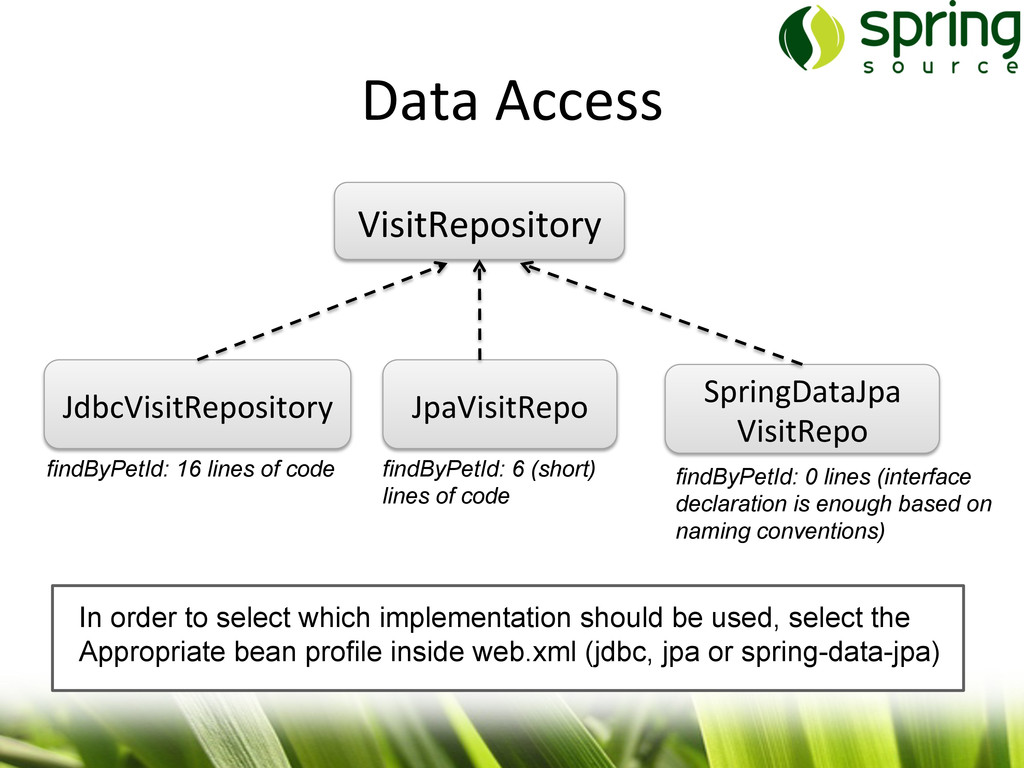 Data Access   VisitRepository  JdbcVis...