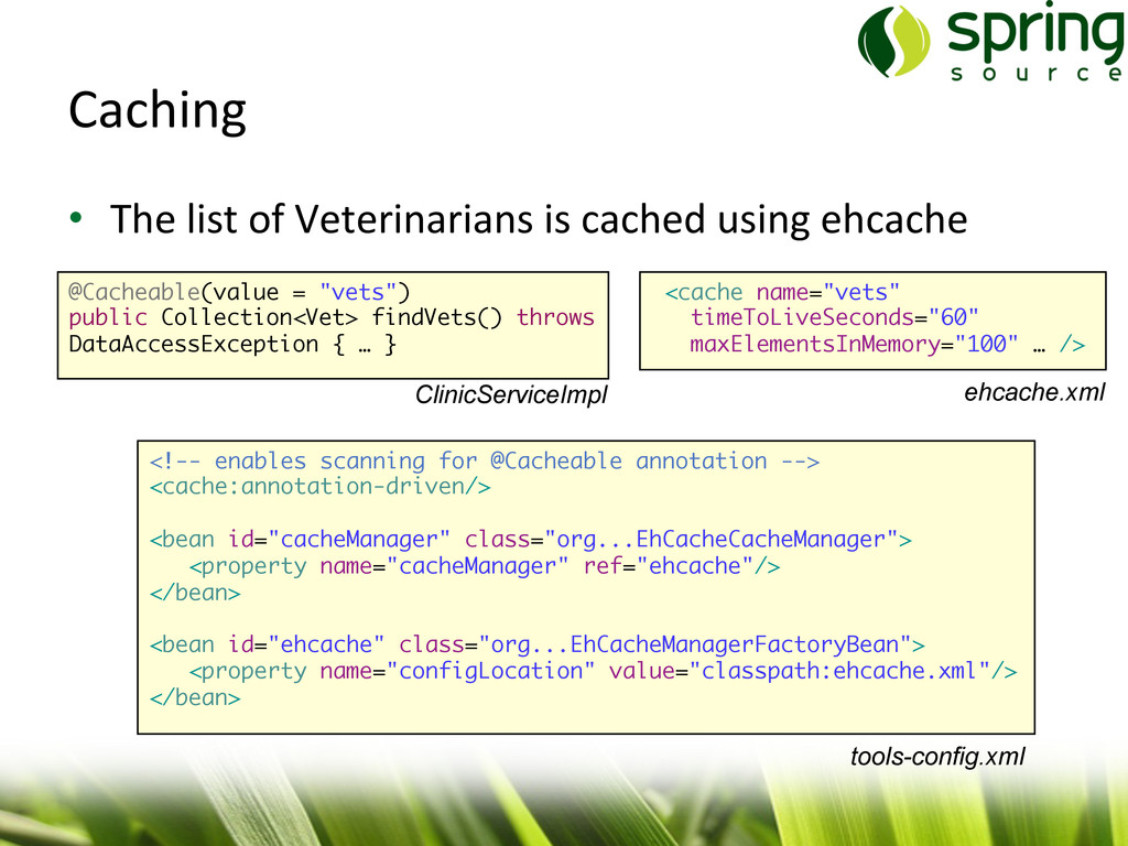 Caching  • The list of Veterinaria...