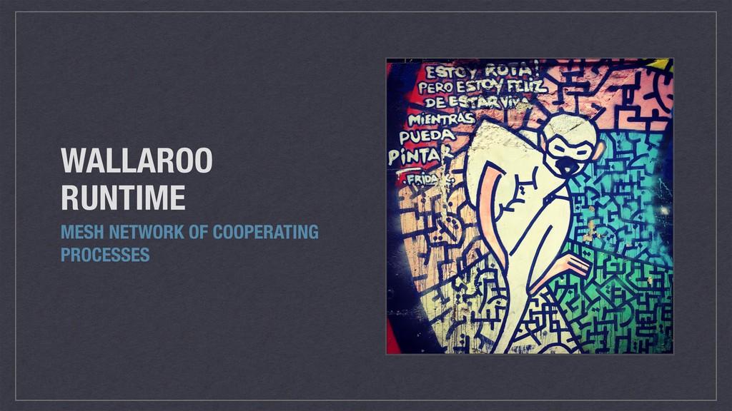WALLAROO RUNTIME MESH NETWORK OF COOPERATING PR...