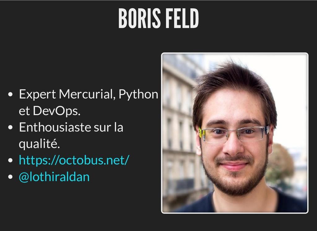 BORIS FELD BORIS FELD Expert Mercurial, Python ...