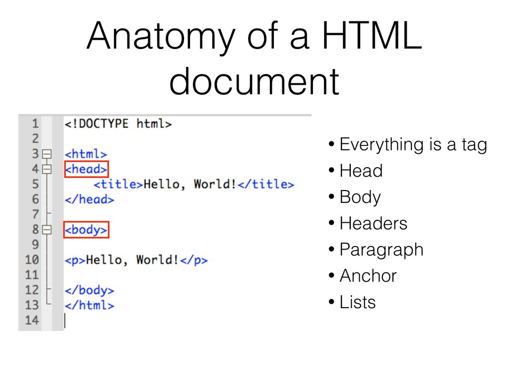 Anatomy of a HTML document • Everything is a ta...