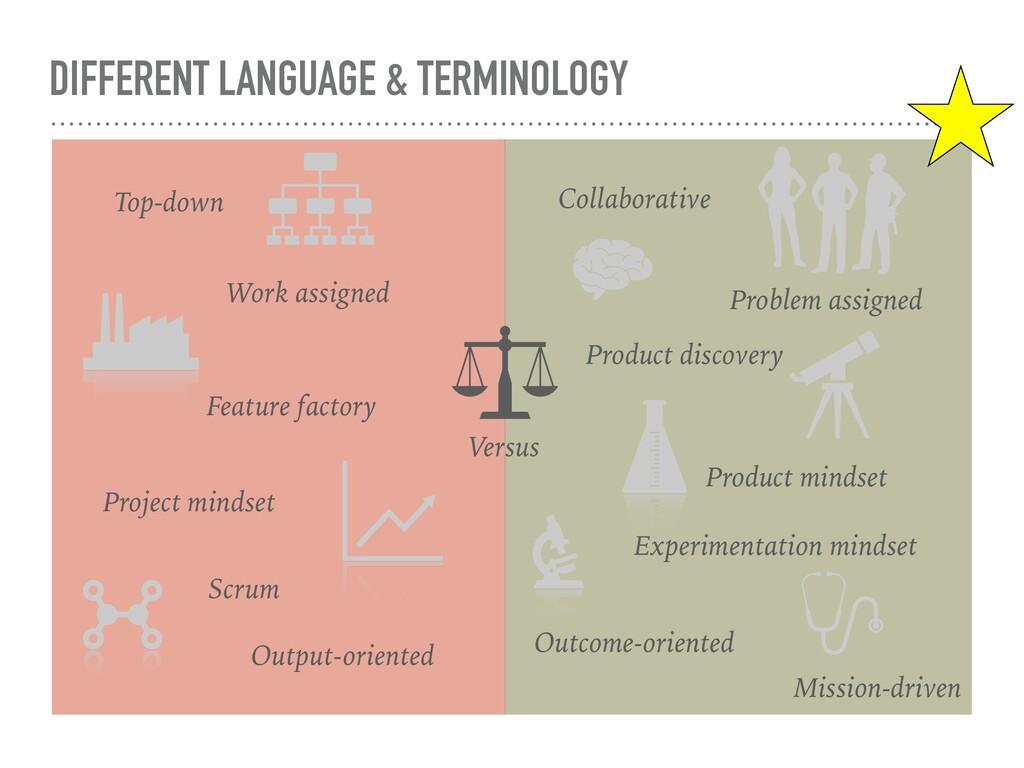 DIFFERENT LANGUAGE & TERMINOLOGY Versus Project...