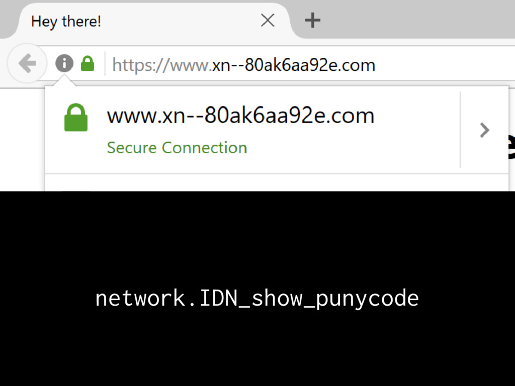 network.IDN_show_punycode