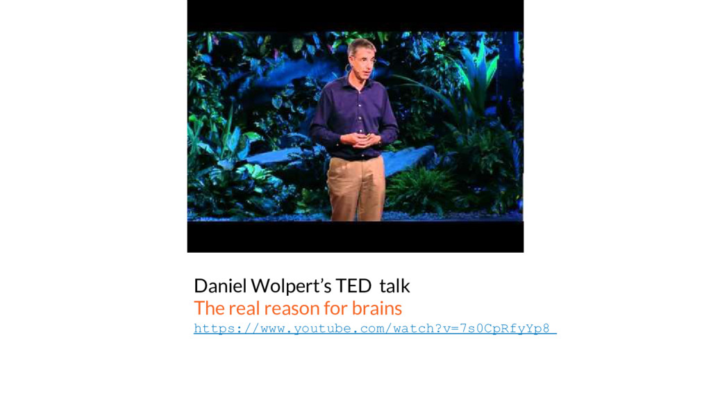 Daniel Wolpert's TED talk The real reason for b...