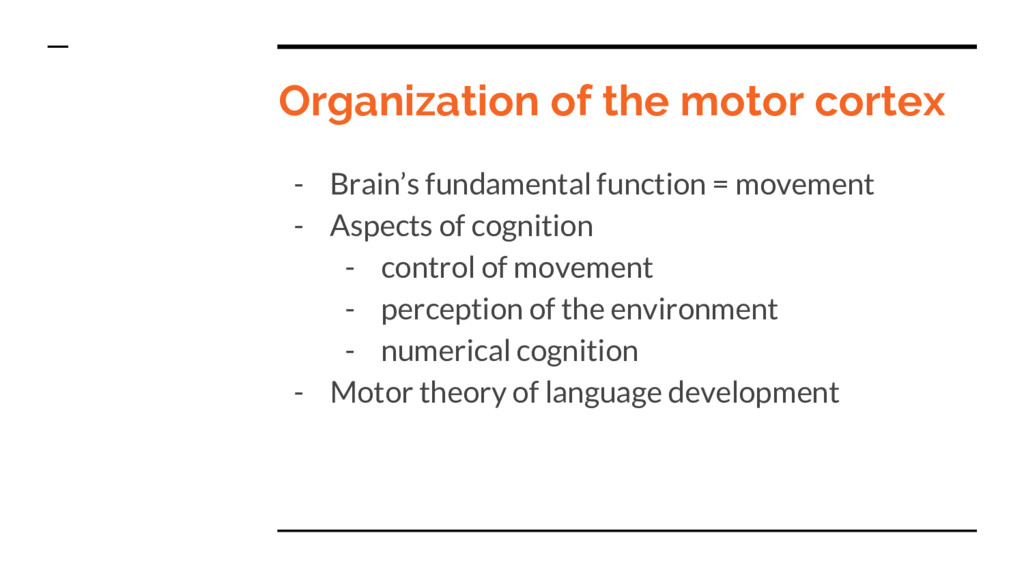 Organization of the motor cortex - Brain's fund...