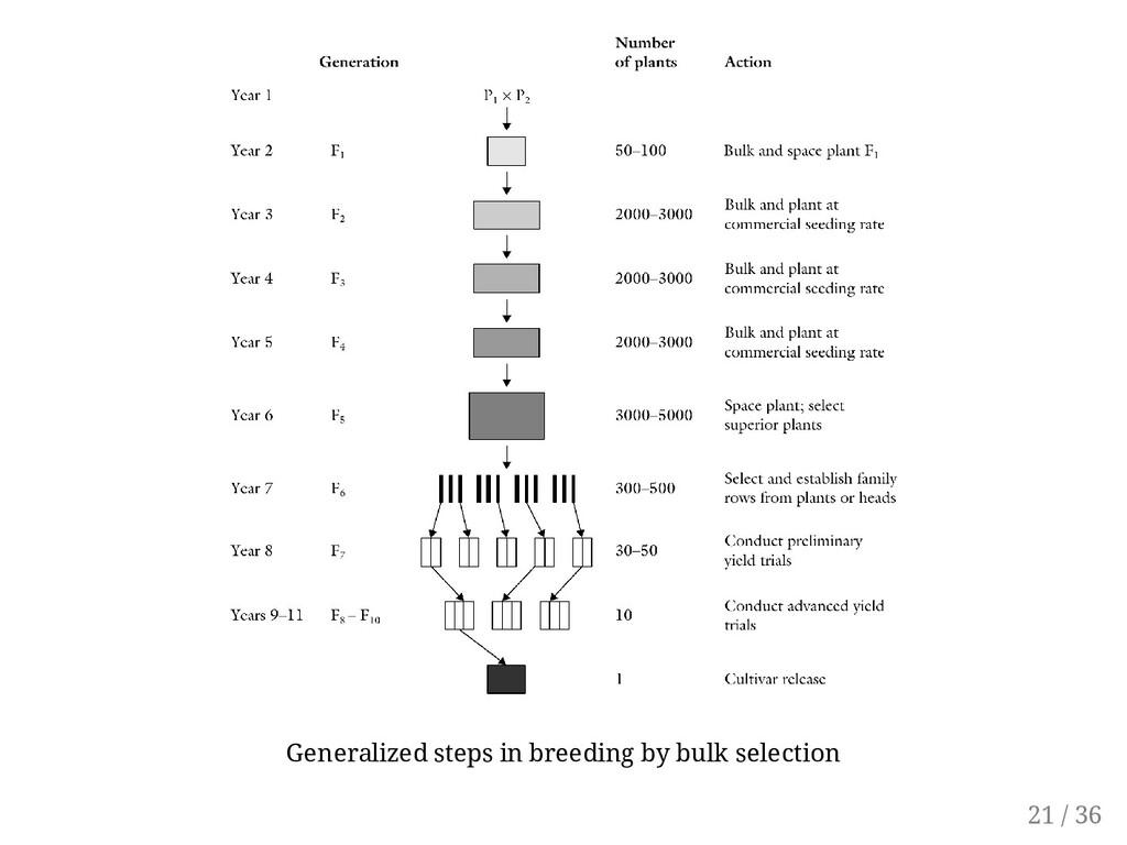 Generalized steps in breeding by bulk selection...