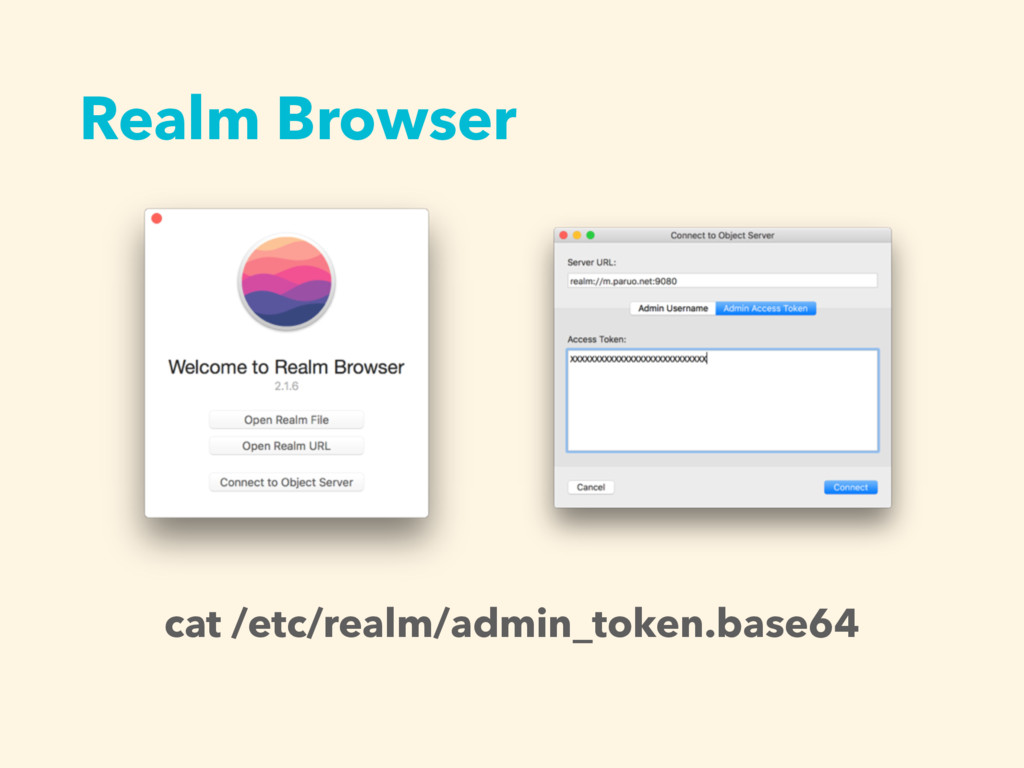 Realm Browser cat /etc/realm/admin_token.base64