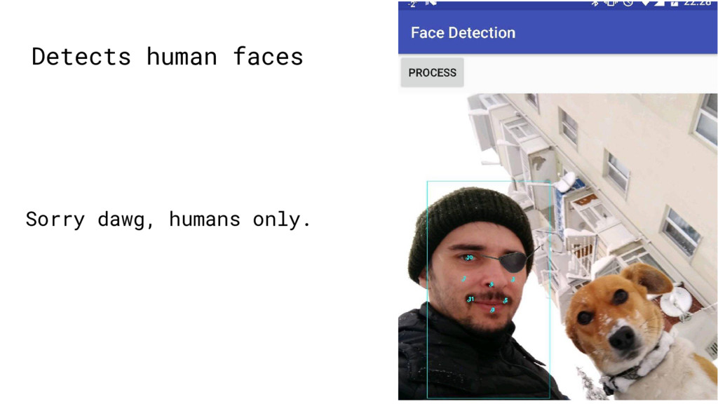 Detects human faces Sorry dawg, humans only.