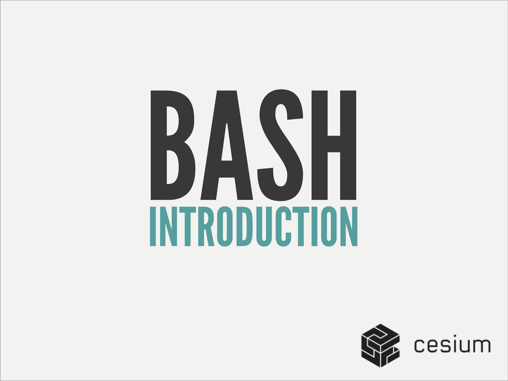 INTRODUCTION BASH