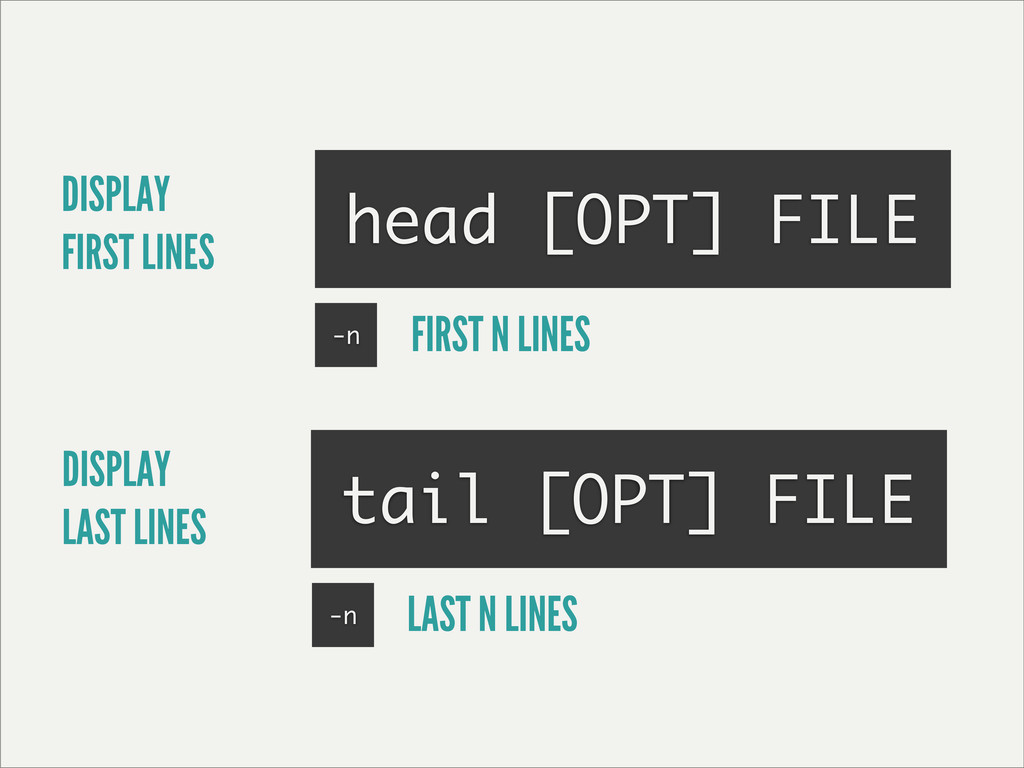 DISPLAY FIRST LINES head [OPT] FILE tail [OPT] ...