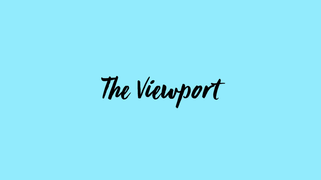 The Viewport