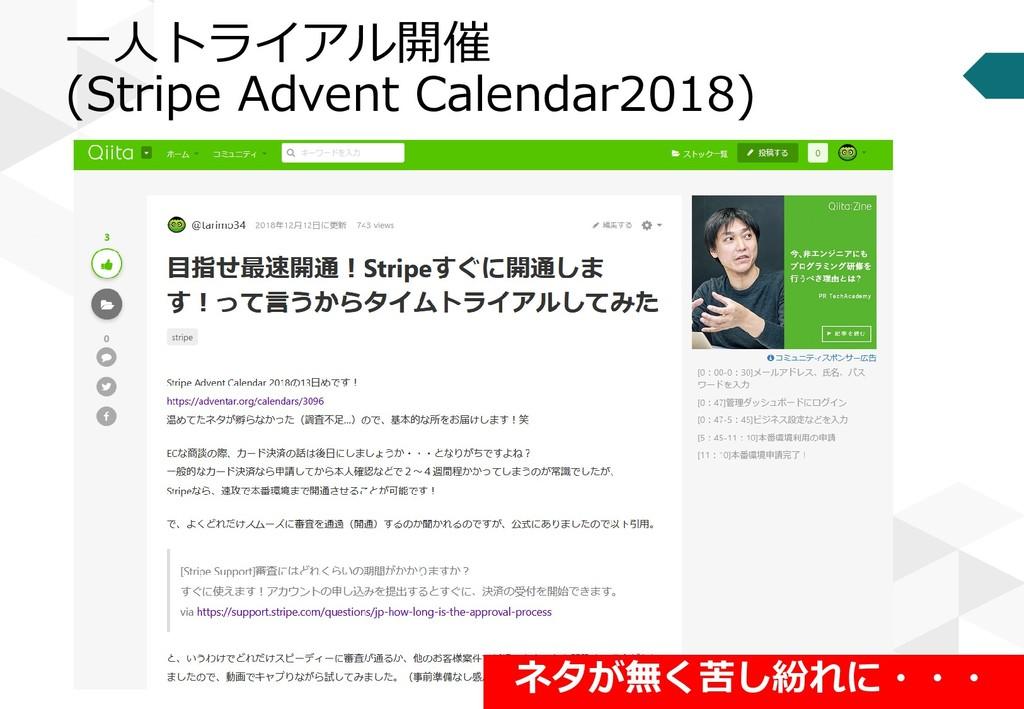 一人トライアル開催 (Stripe Advent Calendar2018) ネタが無く苦し紛...