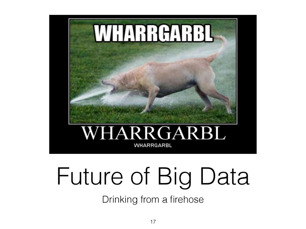Future of Big Data Drinking from a firehose 17