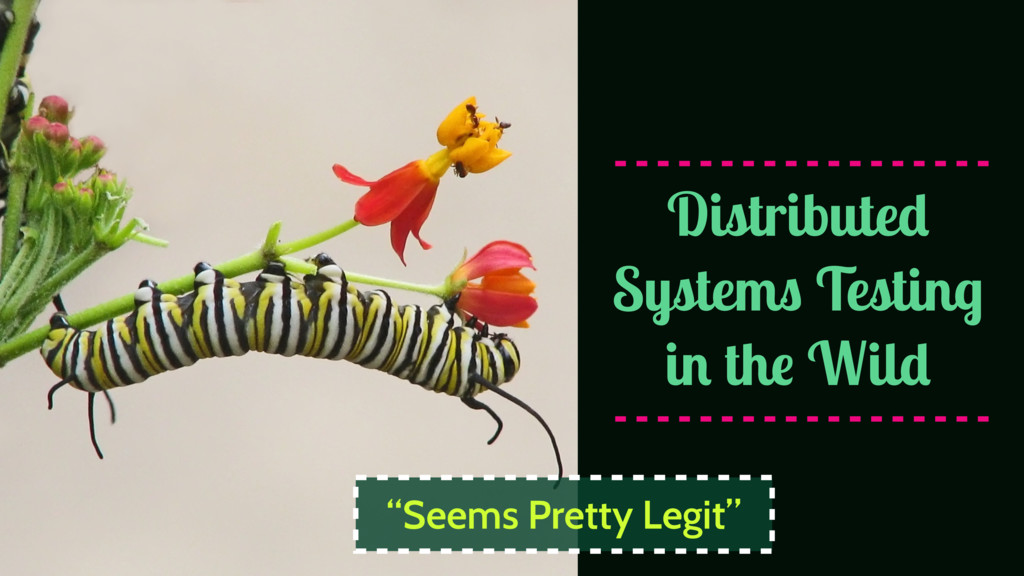 """Distributed Systems Testing in the Wild """"Seems ..."""